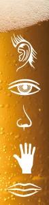 Cerveza con los cinco sentidos