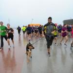 Perro corredor