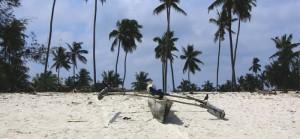 Cervecear en una isla desierta