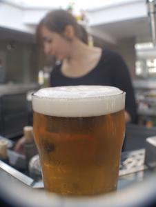 Cervecear en Zaragoza