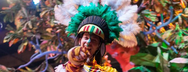 carnavales de canarias